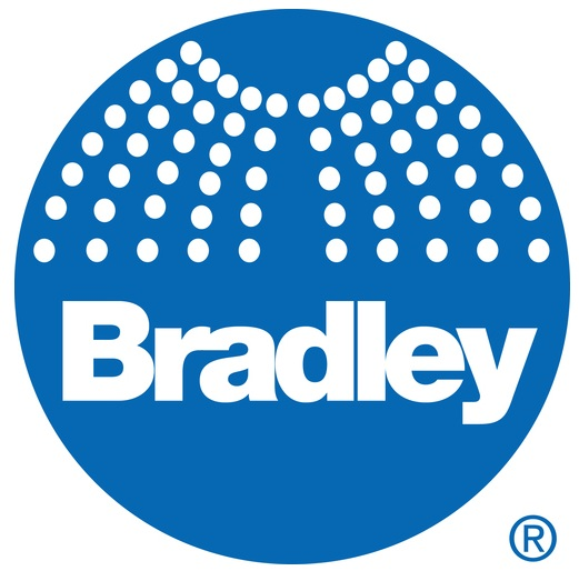 Bradley S19-110BFSS S19 110BFSS Free Standing Stainless Steel Drench Shower Barrier Free